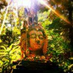 Buddha Head Chiang Mai